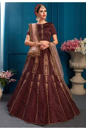 Brown Colour Lehenga Choli.
