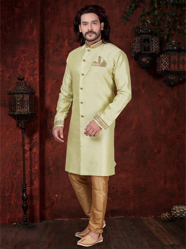 Pista Green Colour Silk Indo Western.